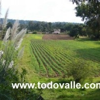 Rancho en venta, Pipioltepec