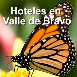 Hoteles y cabañas en Valle de Bravo